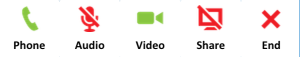 VOIP call with Video