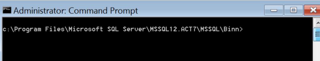 In SQL Server Binn